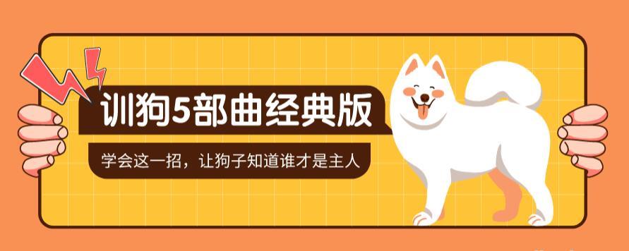 【养狗训狗】训狗五部曲 养狗不再麻烦视频讲座